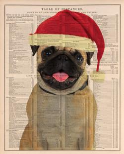 Santa hat dog portrait