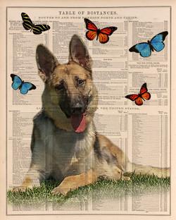 Vintage dog portrait