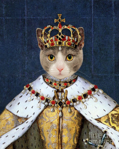 queen-cat-elizabeth-i-delphimages-photo-