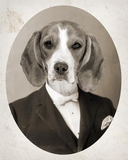 Custom dog portrait, vintage style
