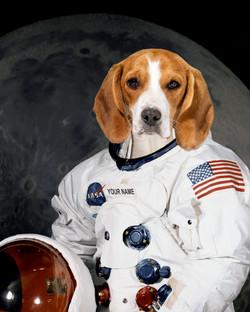 Custom pet portrait NASA astronaut
