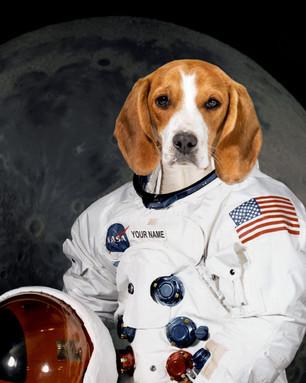 NASA ex 1.jpg