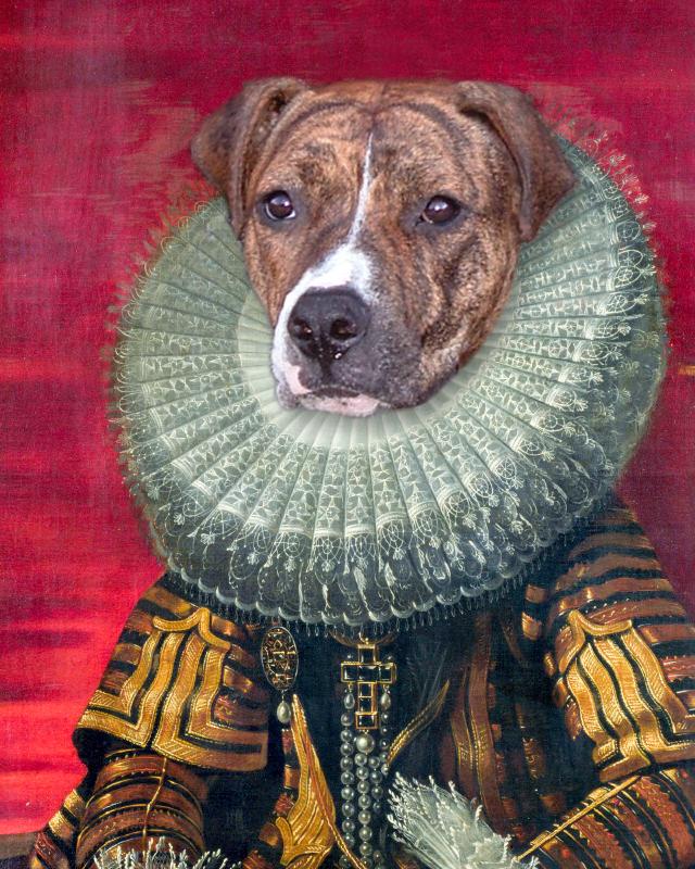 Personalized dog portrait