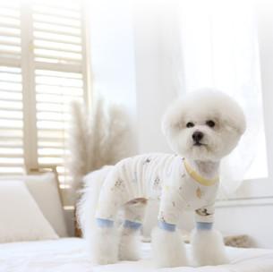 韓国ライフスタイルブランド【ITS DOG】取り扱いしております😘