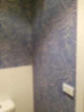 Wave wall papered WC.jpg