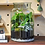 Thumbnail: Heartleaf Philodendron Terrarium