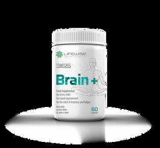 Brain_plus_mockup.png