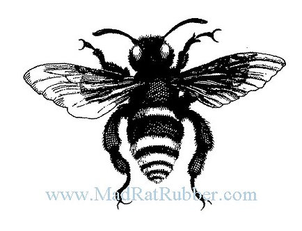 V591 Dark Bee Small B14
