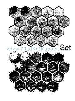 V592/3 Honeycomb Diagram Dark/Light