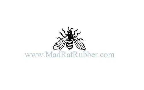 V583 Bee No. 56