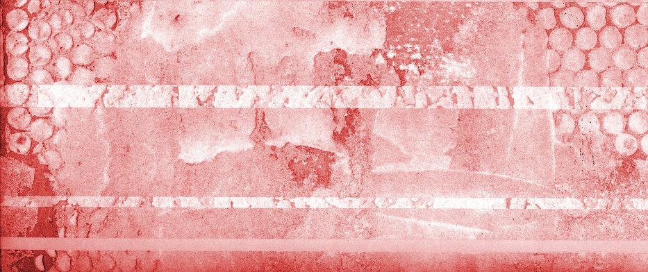reddish back.jpg