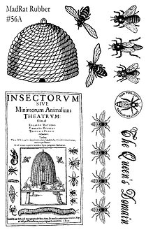 Insectorum Set of 10
