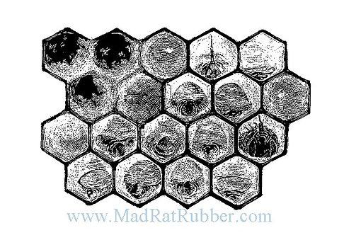 V593 Honeycomb Diagram Light B14