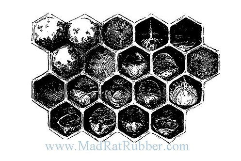 V592 Honeycomb Diagram Dark  B14
