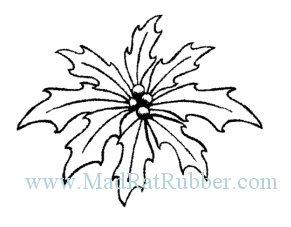 M53 Poinsettia