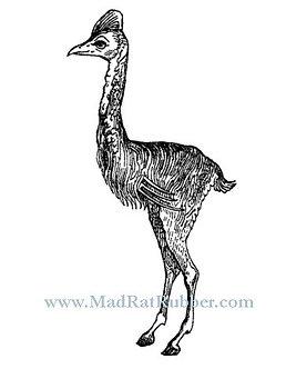 V674 Bird Antelope Hybrid