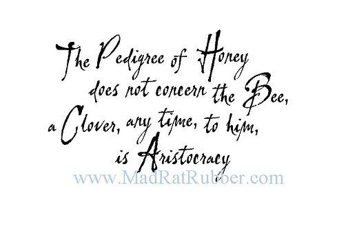 V582 The Pedigree of Honey...