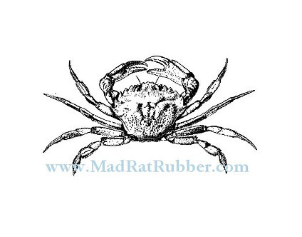 V639 Crab