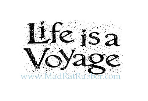 M161 Life is a Voyage