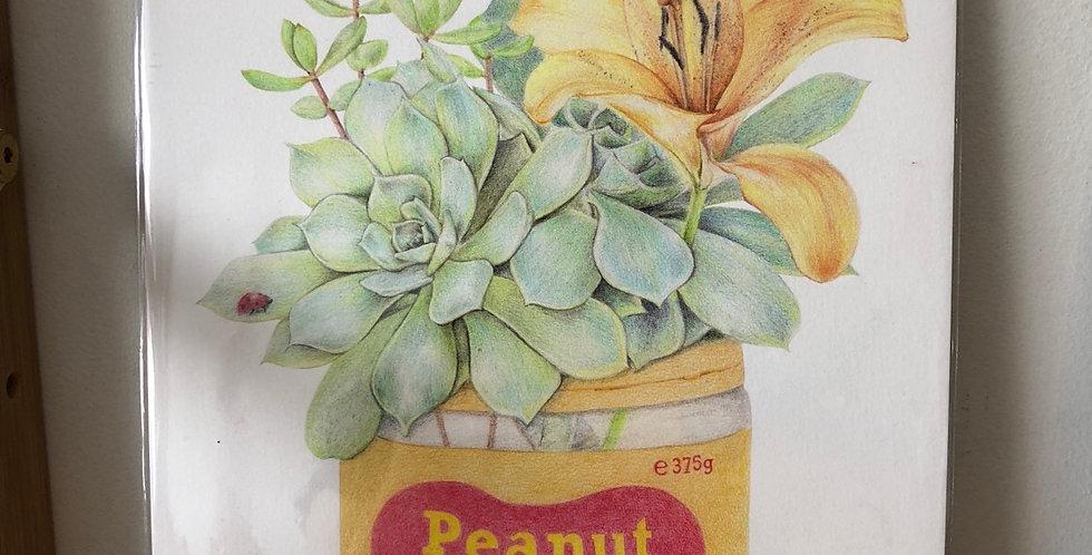 Carmen Hui - Small Print (Peanut Butter)