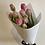 Thumbnail: Double Tulips