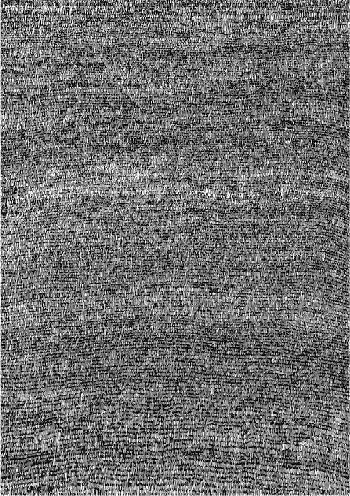 1018499-7.jpg