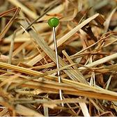 needle in haystack.JPG