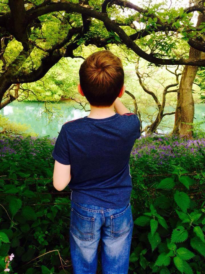 Carsington Reservoir Bluebell Wood