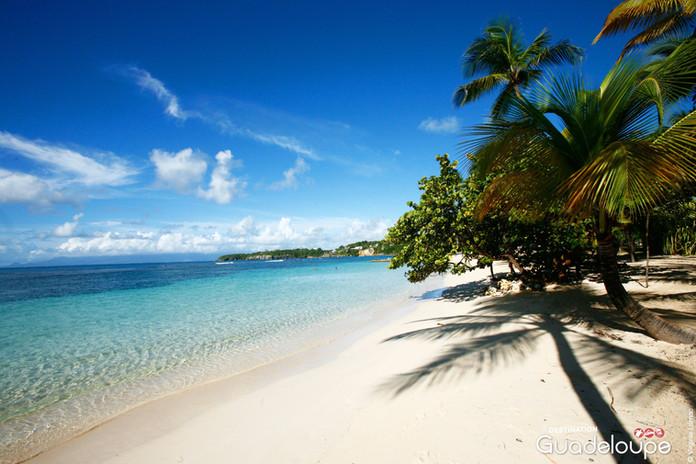 Punta Cana y Crucero por el Caribe