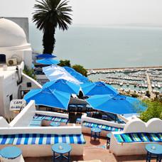 Jazmín de Túnez