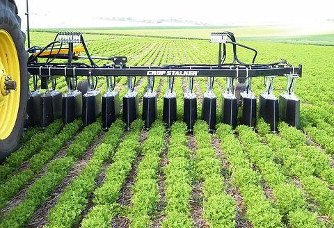 Crop Stalker shielded spray system