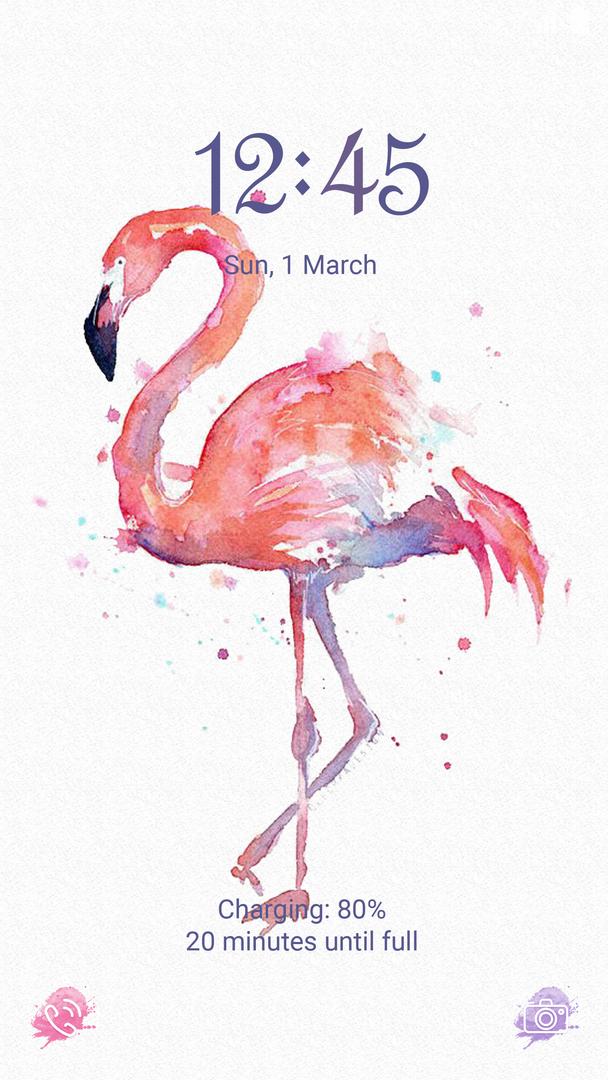 flamingo_main.png