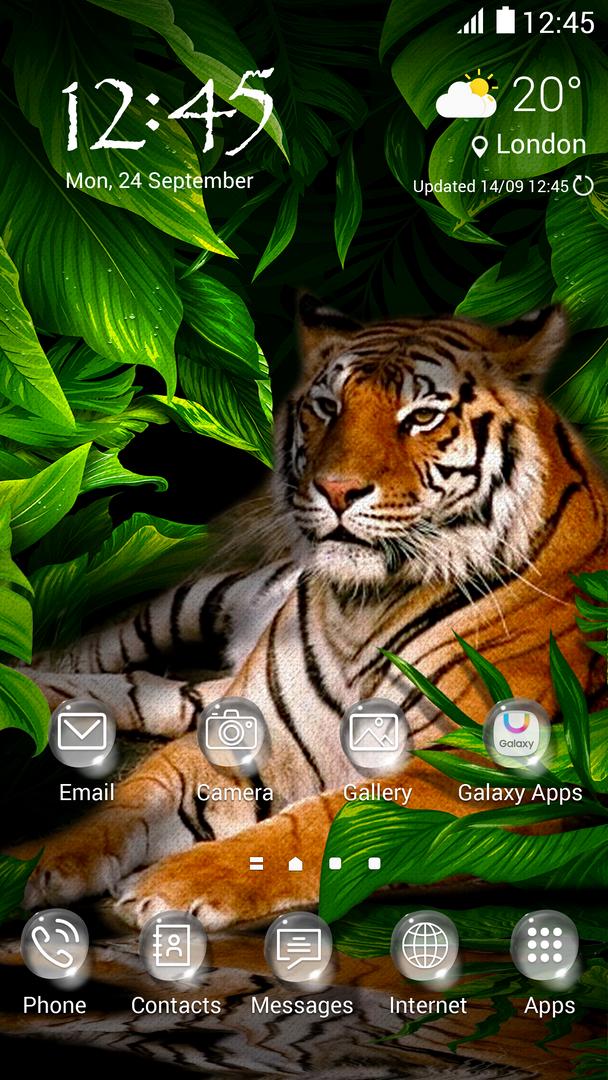 tiger_main.png