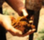 Soil in hands.JPG