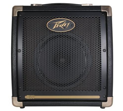 Peavey Ecoustic® E20 20-Watt 1x8 Acoustic Amp Combo
