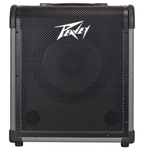 MAX® 100 100-Watt Bass Amp Combo