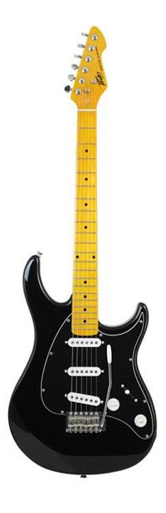 Raptor® Custom Black Electric Guitar