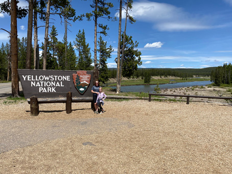 Now is a great time to plan your visit to Yellowstone National Park!