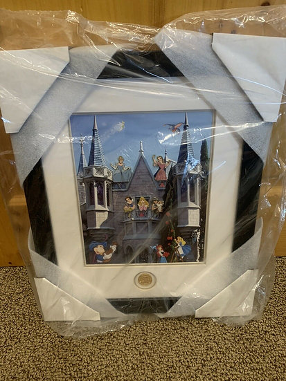 Mickey's Toontown Fairest & Foulest Princess LE 100 WDW Framed Pin Set