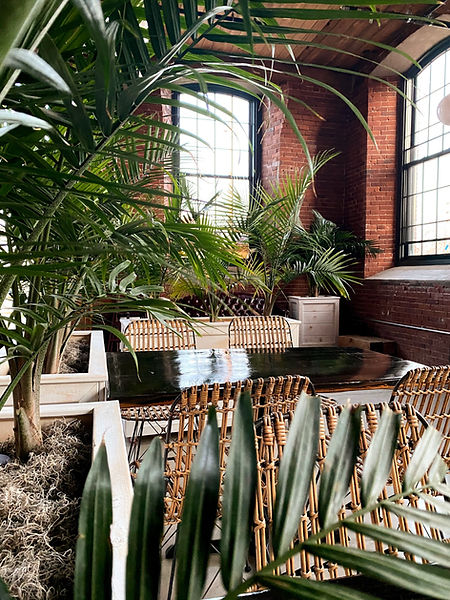 Interior, rattan chairs, palm fronds, leather couch, exposed brick