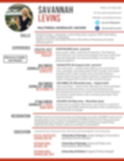 Professional Software Engineer Resume (1