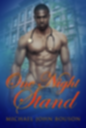 One Night Stand by Michael John Bouson