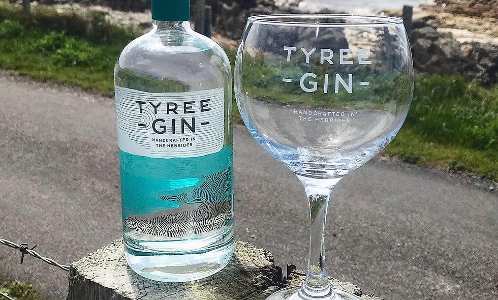 Tyree Gin Cocktail Glass