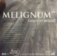 Melignum LVP Sample Tag.JPG