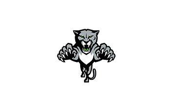 Panther_Solo_Logo.JPG