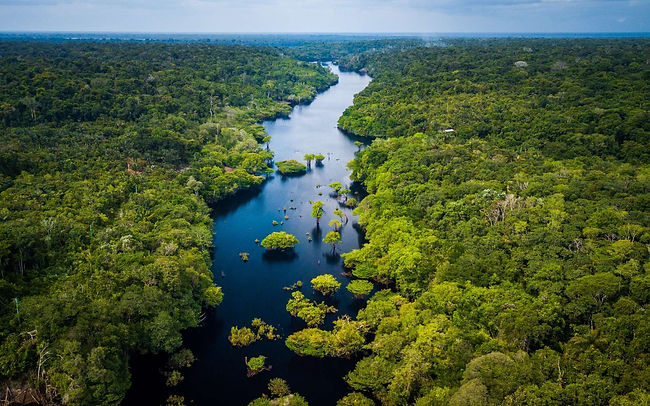 Amazonie.jpeg