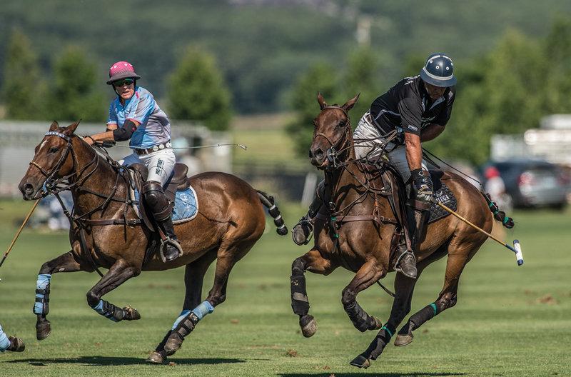 Horseplay6.jpg