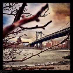 EladGutman-Instagram-35
