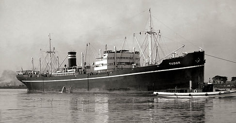 Tudor-30-AllanGreen.jpg