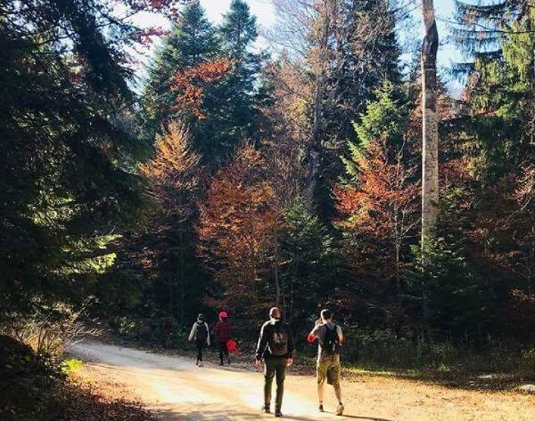 Tara-hiking